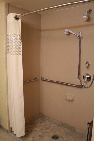 Hampton Inn Ellsworth / Bar Harbor: Roll-in Shower