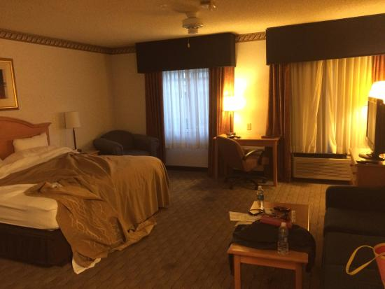 Comfort Inn Tucson: Pretty large room with 1 king and couch.