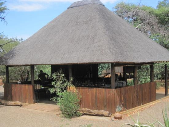 Mosetlha Bush Camp & Eco Lodge Picture