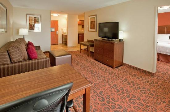 Hampton Inn Idaho Falls/Airport: 2 Room King Suite