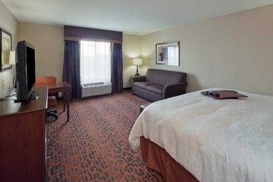 Hampton Inn Beloit: King Bed w/ Sofa Bed