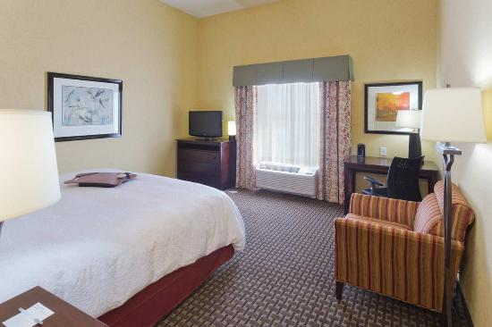 Hampton Inn & Suites Prattville: Standard King NS