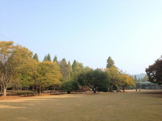 Jinju, South Korea: 경상남도수목원