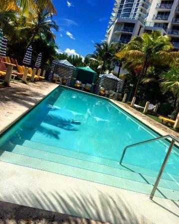 The Confidante Miami Beach Thompson