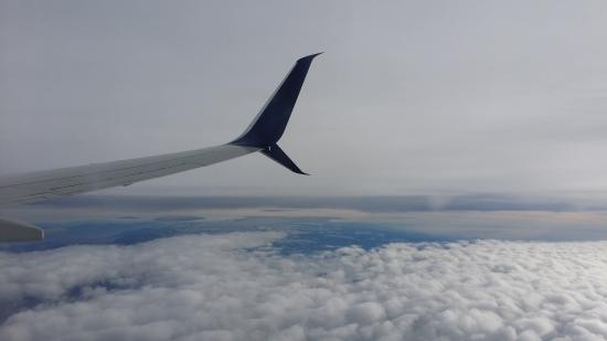 Delta Air Lines: Wing tip of the B737-900