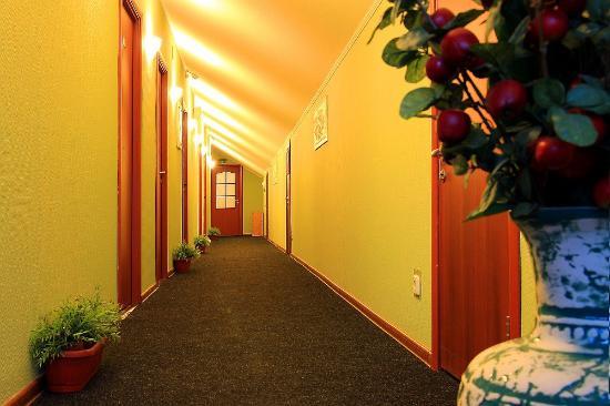 Aviator Hotel Sheremetyevo: Interior
