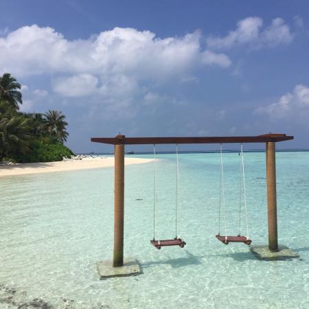 Giornata A Biyadhoo Resort Picture Of Biyadhoo Island