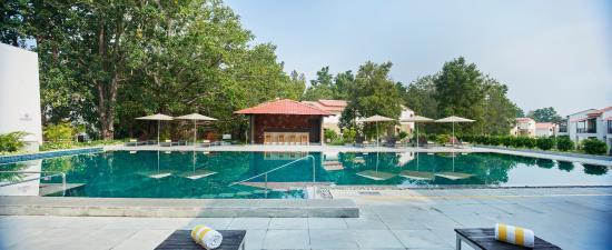 Swimming Pool Picture Of Club Mahindra Kanha Mandla Tripadvisor