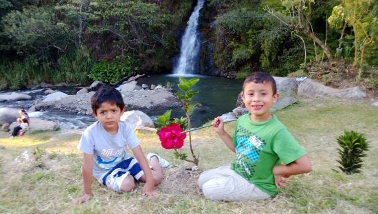 Santa Maria, Kosta Rika: Zona verde entre la cascada y el restaurante.