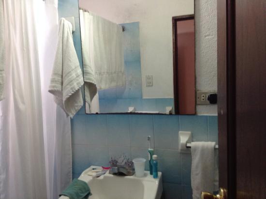 Hotel Santa Clara: Small shower room. Basic but adequate.