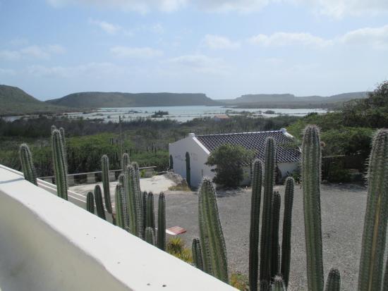 Landhuis Jan Kok : Uitzicht vanaf het terras