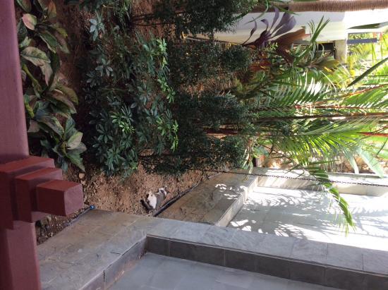 Nakamanda Resort & Spa: jacuzzivilla