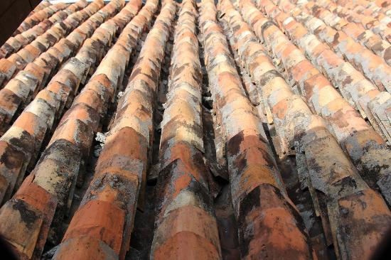 No 8 Heeren Street Heritage Centre: roof tiles