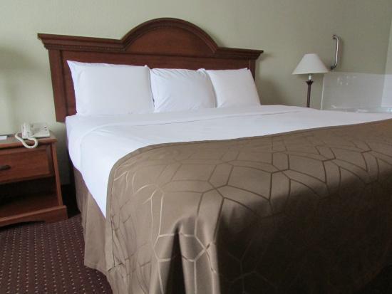 Dollinger's Inn & Suites: Standard-King Bed