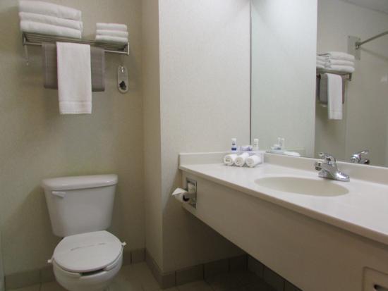 Dollinger's Inn & Suites: Bathroom