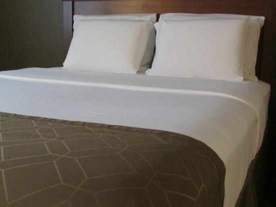 دولينجرز إن آند سويتس: Standard room-Two Queen Beds