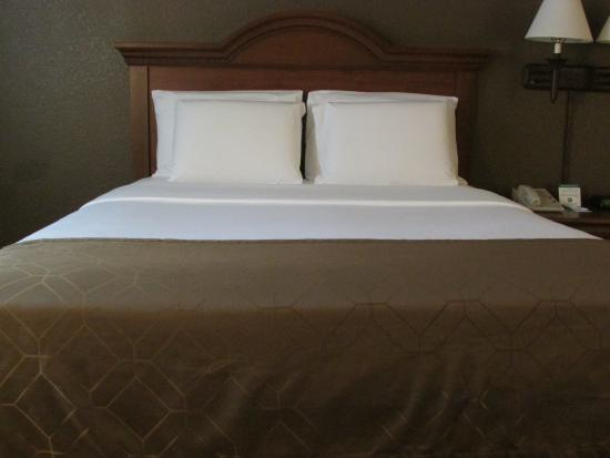 Dollinger's Inn & Suites: Standard Room-Two Queen Beds
