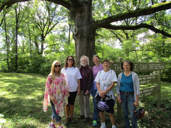 Kile Oak Habitat Garden