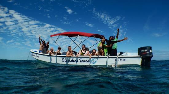 Stressless Aquatic Tours