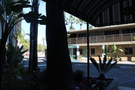 Holiday Inn San Diego-Bayside: Blick von unserem Ausgang in Richtung Poolbereich.