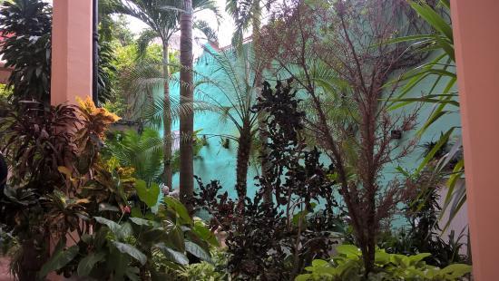 Hostal Autentica Pergola: giardino Jj