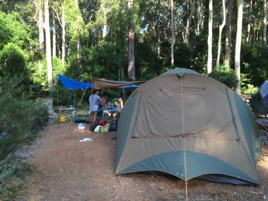 Durras North, Australien: Amazing bush setting with conveniences of a campground