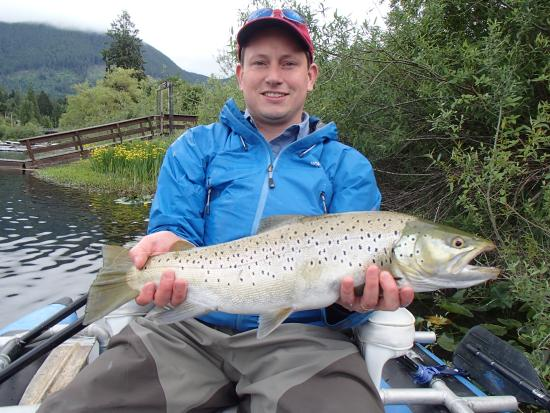 Brown trout on the cowichan river picture of kenzie 39 s for Fishing vancouver island