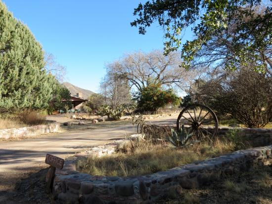 Cave Creek Ranch: Entrance to ranch