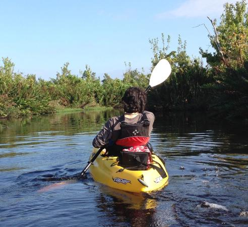 Arcadia, FL: Peace River Kayak Tour