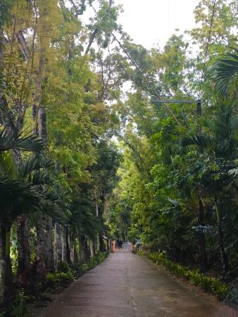 Νησιά Visayan, Φιλιππίνες: photo9.jpg