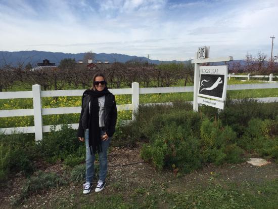 Rutherford, Kaliforniya: entrada da vinícola