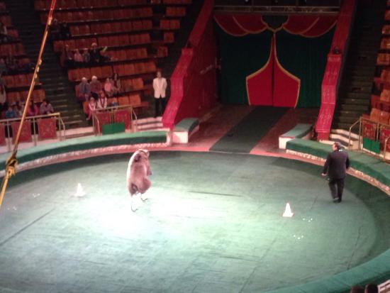 Tver State Circus