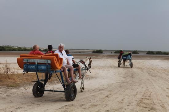 Hakuna Matata Campement: la caleche une fois de l'autre coté du fleuve, pour rejoindre le campement