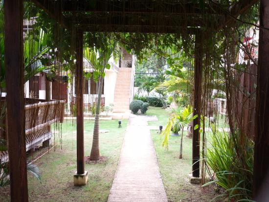 Palms Cove Bohol Photo