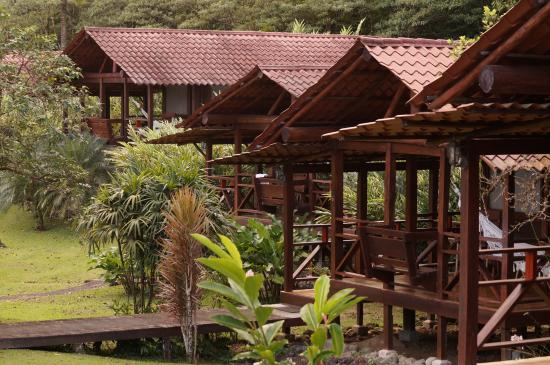 La Anita Rainforest Ranch: the cabins are next to each other