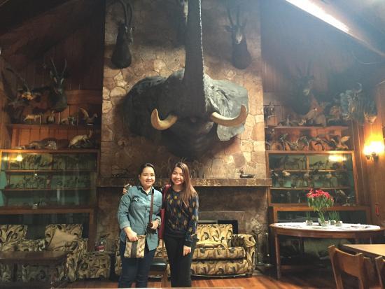 Safari Lodge: Nice place to stay