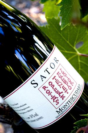 SATOR Winery