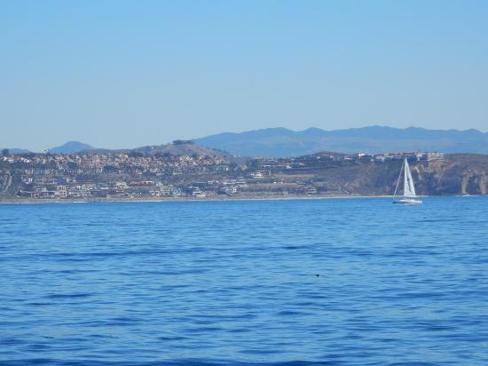 Dana Point, Californien: photo7.jpg