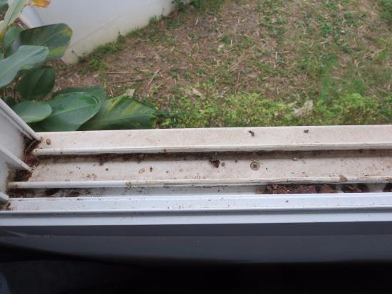 The Piano Resort : Window frame