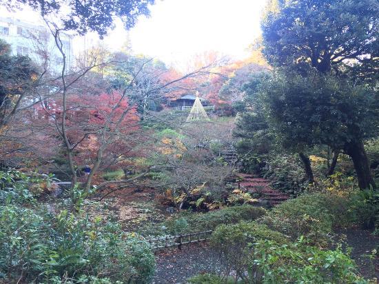 Ikedayama Park Gallery