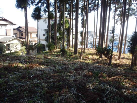 Uenoyama Tumulus
