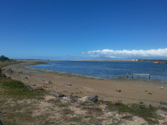 Murray Mouth Lookout