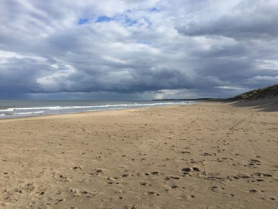 8 Top-Rated Tourist Attractions in Wexford & Easy Day