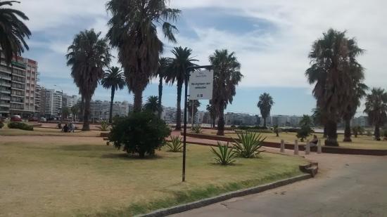 Plaza Daniel Muñoz