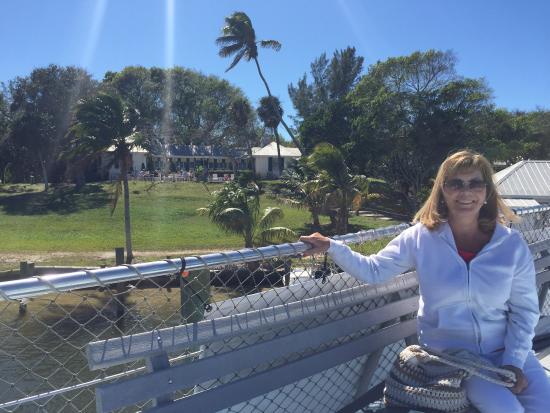 Southwest Gulf Coast, فلوريدا: photo0.jpg