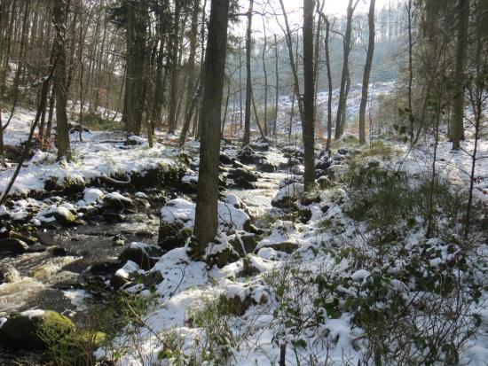 La Vallée de la Hoëgne
