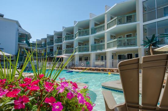 Ala Moana Resort Motel : Ala Moana Motel Pool