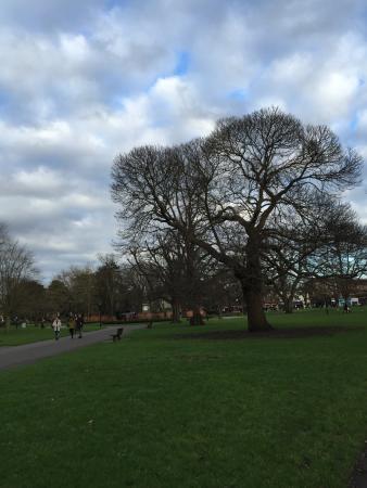 Watts Park.