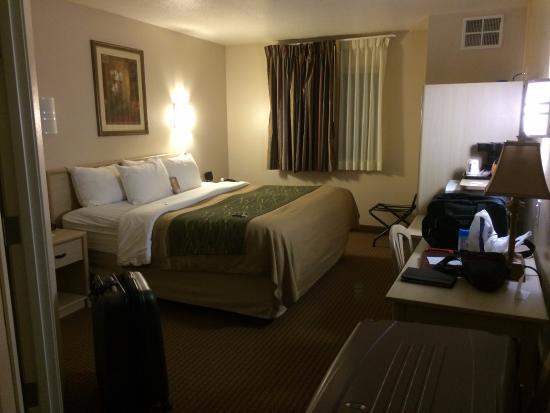 Quality Inn: Single King, Room 226