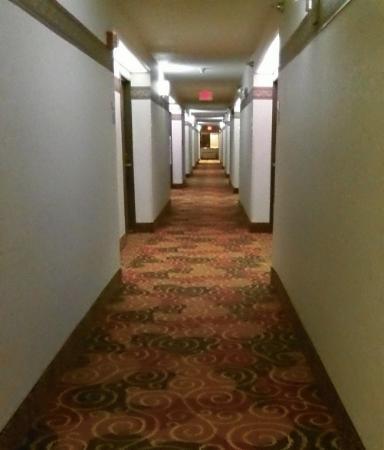 Rodeway Inn Coopersville: interior hallway